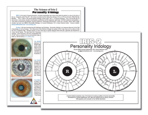 Iridology Iris 2 Map